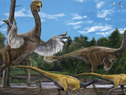 Поэволюционируй по Палеонтологическому музею