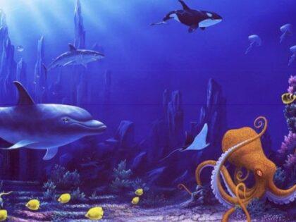 Нырнём в океан?